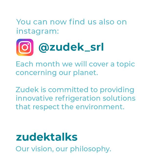 zudek instagram